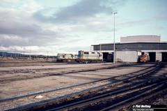1238 L258 KA212 L256 X1028 Forrestfield Loco Depot 21 May 1980 (RailWA) Tags: railwa philmelling l258 ka212 l256 x1028 forrestfield loco depot may 1980 westrail