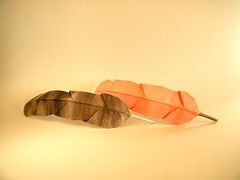 Pluma - Yara Yagi (Rui.Roda) Tags: origami papiroflexia papierfalten feather plume pena pluma yara yagi