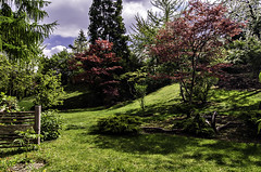 Japanese garden (szlavid) Tags: nikon d7000 tokina 1224 zoo budapest nature city urban landscape spring beautiful