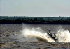 GI 252 (cadayf) Tags: 33 gironde estuaire estuary vitesse speed bâteau boat vague wave