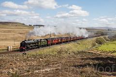 46115 Shap Wells 220417 N63A6789-a (Tony.Woof) Tags: lms 7p 46115 scots guardsman shap wells steam cumbrian mountain express