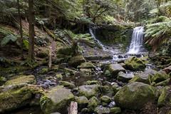 DSC05273 (nigel0577) Tags: sony alpha a99ii tasmania 1635mm ziess horseshoe falls forest green waterfall