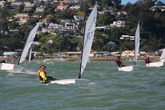 ARIANE 4 (yctahiti) Tags: nz napier national 2017 optimist