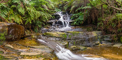 Leura Cascades (Anthony's Olympus Adventures) Tags: nsw australia bluemountains katoomba mountain park rock formation icon famous pano panoramic view lookout waterfall water cascade longexposure rocks photo photography olympusem10 olympus olympusomd leura leuracascades