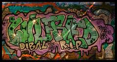 XT1S2121_tonemappedVSSTP (jmriem) Tags: jmriem colombes 2017 graffiti graffs graff street art