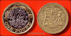 """This is the Tail's (Reverse) Of The One Pound Coin 52 in 2017 Week #17 """"Contrast"""" (bokosphotos) Tags: 52 2017 52in2017 week17 taken30april2017 coin newandoldonepoundcoin heads tails contrast onepoundcoin oldnew panasonic reversingring manualfilmlens panasonicgh3 affinityphoto affinity"""