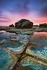 Tesselation (mibreit) Tags: australia forresters tesselation travel landscape sea coast beach rocks australien northernbeaches