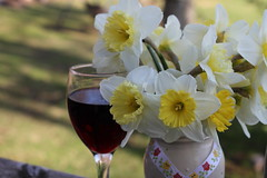 Daffodils and Wine (CCphotoworks) Tags: glass vase nature outdoors yellowflowers bouquet springflowers spring redwine wine daffodils
