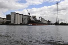 Agri Bright bulk carrier unloading at ADM, Hamburg (Pim Stouten) Tags: jork nordlichtertreffen jag jaguar boat boot schip vessel bulkcarrier