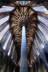 Le Palmier, Toulouse (dim.garcia) Tags: palmier toulouse grandangle art symétrie lumière intérieur france hauteur jour ville voyage basilique régionoccitane hautegaronne