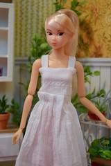 CCS- White Hazy Wind Momoko (Girl Least Likely To) Tags: momoko ccs closeclippedsheep whitehazywind elenial asianfashiondolls japanesetoys dolls dress ponytail whitehaired diorama dollhouse dollscene dollroom miniatures