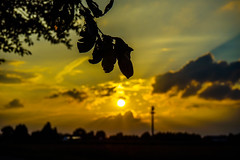 Sunset Kutenhausen (5149mich) Tags: sunset sommer minden nrw germany nature clouds wolken trres sky sony