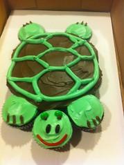 Turtle Cake, Loudon County, VA, www.birthdaycakes4free.com