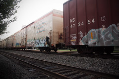 streaking on the fly (No Real Name Given.) Tags: railroad art train bench graffiti streak rail boxcar freight swear reefer raos moniker cryo