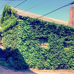Secret house in the alley #lawrenceville #pittsburgh (consolidatedartists) Tags: square nashville squareformat iphoneography instagramapp uploaded:by=instagram