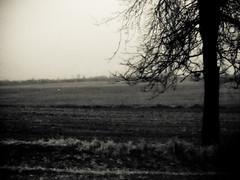 Desolation (Immortal Zoddo) Tags: blackandwhite bw black bleak desolate desolation