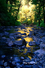 023.5jpg (Photos by Wesley Edward Clark) Tags: oregon molalla scottsmills abiquacreek abiquafalls crookedfingerrd