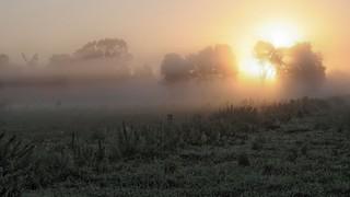 Über Bergenhusen geht die Sonne auf; Stapelholm (1)