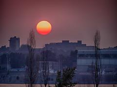 Interlude (!Michel Grenier!) Tags: sunset sun river soleil smog warm montréal montreal smoke grain chaud coucherdesoleil pénombre fleuve penumbra portdemontréal montrealport lumixgvario100300f4056 olympusem5