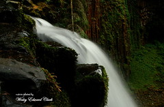 022 (Photos by Wesley Edward Clark) Tags: oregon silverton waterfalls scottsmills abiquacreek abiquafalls