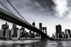IMG_3252 (Webtonic.ch) Tags: newyork brooklyn timesquare brookylnbridge