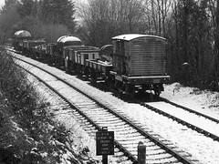 SVR 15040bwcr (kgvuk) Tags: station trains railwaystation vans trucks railways severnvalleyrailway bewdley goodstrain northwoodlane