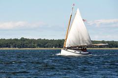 _DSC0137 (quantumking007) Tags: ocean wood fish river bristol ma boat fishing ship power yacht jetty tide vessel boom atlantic sail mast sailor nautical fiberglass current merrimack tiller rudder newburyport 01950