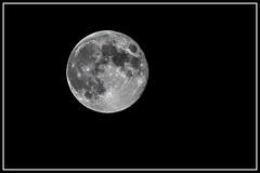 Full Moon Rising (thatkatmat22) Tags: blackandwhite bw moon space crater lunar manonthemoon