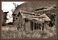It's Only a Matter of Time (the Gallopping Geezer 3.8 million + views....) Tags: bw house building abandoned home sepia barn rural canon blackwhite decay michigan farm country rustic shed farmland structure faded vacant worn toned derelict deserted decayed geezer dwelling 2013 tonemap