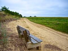 Wellfleet Bay Wildlife Sanctuary (Timothy Valentine) Tags: bench capecod large monday 0813 wellfleetma massachusettsaudubon