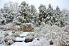 Winter Bench (Eddie C3) Tags: newyorkcity snow day bronx botanicalgardens wavehill gardengrounds