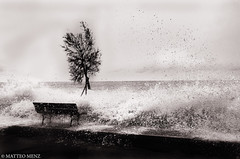 """"""" I looked out this morning and the sun was gone Turned on some music to start my day """" (Matteo Menz) Tags: light shadow sea sky blackandwhite italy white storm abstract black tree art nature water colors rock stone alberi backlight grey blackwhite drops nikon rocks italia nuvole mare grigio seascapes liguria fineart ombra digitalart fine wave natura drop gale ombre cielo nikkor tempest matteo roccia albero rocce acqua could nero coulds spiaggia bianconero hdr luce flurry imperia scogli orizzonte abstracted menz contrasto alassio roccie roughseas scherma laigueglia brucia bluster abigfave flickraward d5100 ringexcellence nikond5100"""