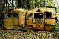 Old school buses (ChristinaLamia) Tags: old school urban bus abandoned nature woods nikon exing d3100