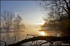 Sunrise on river Ticino (alfvet) Tags: sunrise river nikon alba fiume sole vigevano parcodelticino veterinarifotografi d5100 infinitexposure