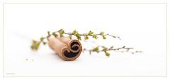 (Ana Lukascuk) Tags: food leaf still cinnamon spice twig stick curl
