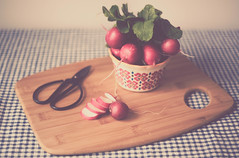 ~A tiny radish of passionate scarlet, tipped modestly in white. (Fire Fighter's Wife) Tags: food radish leaves scissors cuttingboard table checkered blue red matte tabletopstilllife tabletop creative creativity composition vegetable shadows shadowsandlight muted mutedcolors mutedhues faded fadedcolors fadedhues softcolors softhues softpastels softhaze soft haze hazy bowl colors colorpop compositions sometimessavory pentacon50mmf18 pentacon pentaconf1850mm vintagelens vintage vintageprocessing retro stilllife retroprocessing