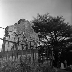 Fenced in (4foot2) Tags: fencedin gravestone graveyard graves church shadow stmaryschurch newick ceder analogue film filmphotography oldfilm outofdatefilm expiredfilm experimental 120film mediumformat voigtlander voigtländerbrillant boxcamera hp5 ilfordhp5 ilford bw blackandwhite monochrome mono rodinal standdevelop 2017 fourfoottwo 4foot2 4foot2photostream 4foot2flickr
