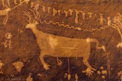Big Buck (W9JIM) Tags: w9jim rockart petroglyph bearsears bearsearsnationalmonument 7d 24105l combridge bluffutah