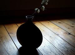 Wenn ich einen grünen Zweig (SpitMcGee) Tags: zweig bough vase licht light schatten shadow fenster window fussboden floor zitat quote spitmcgee