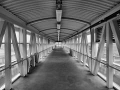 Elevated Pedestrian Walkway, Whitby, Ontario (duaneschermerhorn) Tags: walkway pedestrianwalkway black blackandwhite blackwhite white train station
