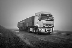 Foggy day (lndrg88) Tags: nikon d7100 tokina 1116 renault truck camion argentina optidriver premium lander bw black white blanco negro
