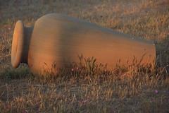 anfora (flavia alida) Tags: anfora legno erba fiorellini luce tramonto senigallia giallo scuro natura