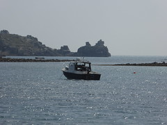 18 April 2017 Scilly (29) (togetherthroughlife) Tags: 2017 april scilly islesofscilly