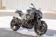 Z800 on Air Strip (Simply Shrimping Media) Tags: kawasaki z800 motorbike motorcycle bike street fighter naked airport strip wash suds soap foam orlando florida