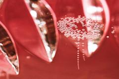 Happy 10 Years! (socialwebforscher) Tags: blasen canon100mmf28l canoneos5dmarkiv happy10years kelch macromondays makro sektkelch bubbles champagnecup rosa sparkling wine crémantdeloire rosé