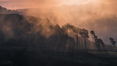 Ramshaw Rocks (JamesPicture) Tags: peakdistrict roaches staffordshire sunrise theroaches upperhulme england unitedkingdom gb ramshawrocks