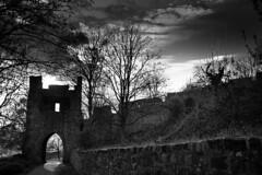 Münzburg (Günther Bayerle) Tags: burg castle münzburg hessen germany