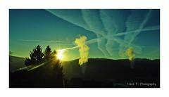 this morning (friedrichfrank1966) Tags: sonnenschein sunlight chaos silhouettes heaven bluesky sunshine licht spring march märz siegen germany sigma 1224 light nature himmel