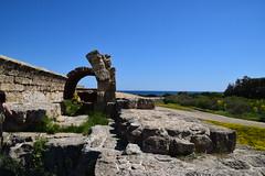 DSC_0249 (mark.greefhorst) Tags: cyprus northerncyprus salamis ancientworld roman