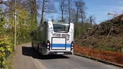Keolis Yvelines réseau Phebus Versailles Grand Parc Heuliez GX 137 L DL-294-CX (78) n°38 (couvrat.sylvain) Tags: keolis yvelines phebus versailles grand parc heuliezbus heuliez gx 137 l gx137l bus midibus autobus saintcyr stcyr
